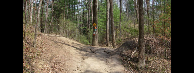 Redbud Riding Area